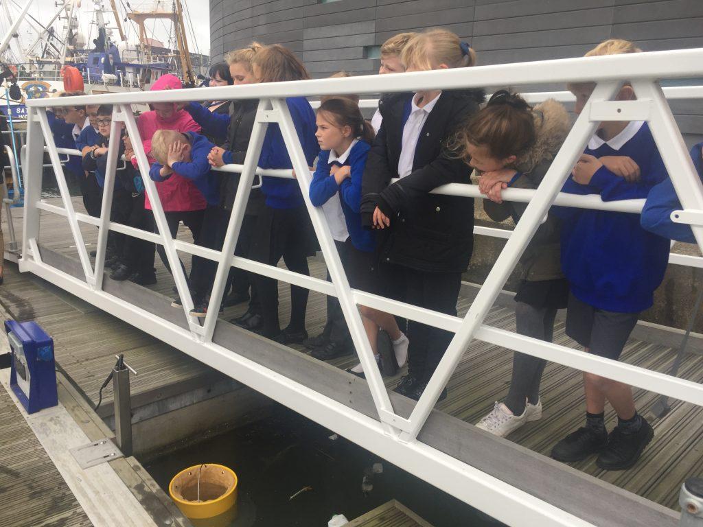 seabin installation
